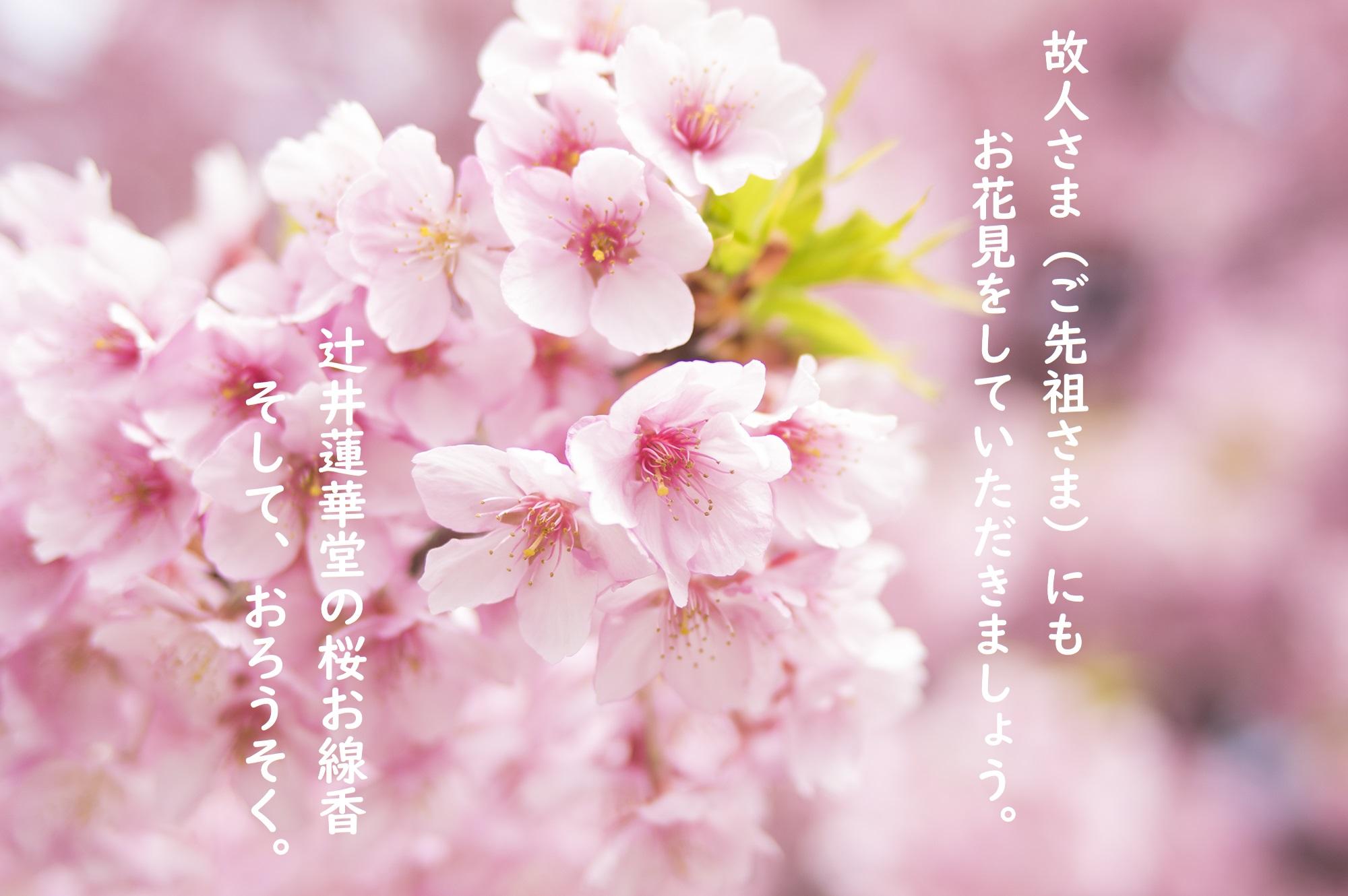 春を感じるお品のご紹介です。